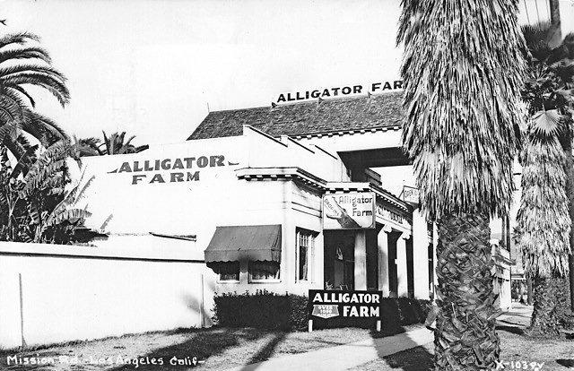 AlligatorFarm.jpg