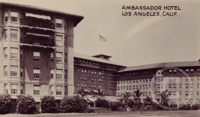 Ambasador.jpg