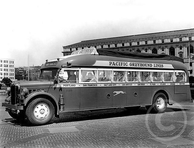 greyhoundbus.jpg